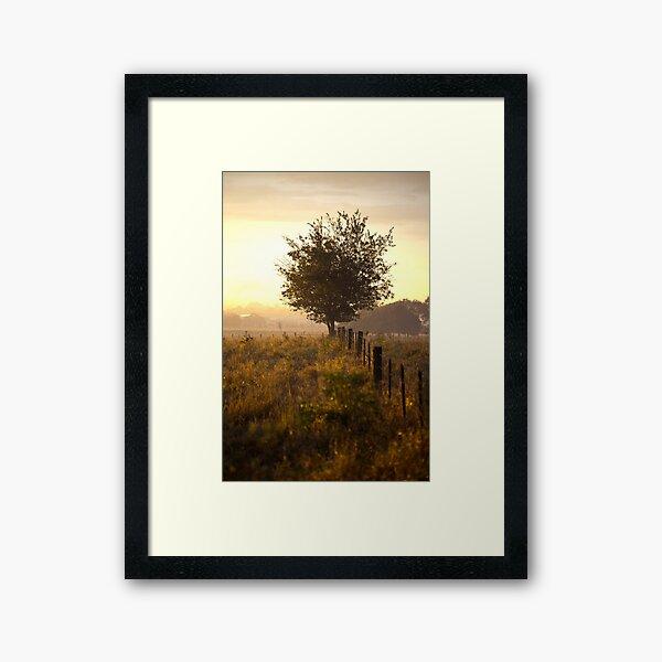 Sun day Framed Art Print