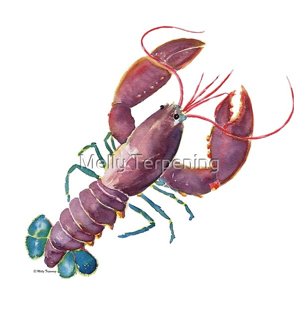 Lobster by Melly Terpening