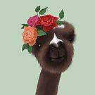 Kasper the Alpaca by agrapedesign