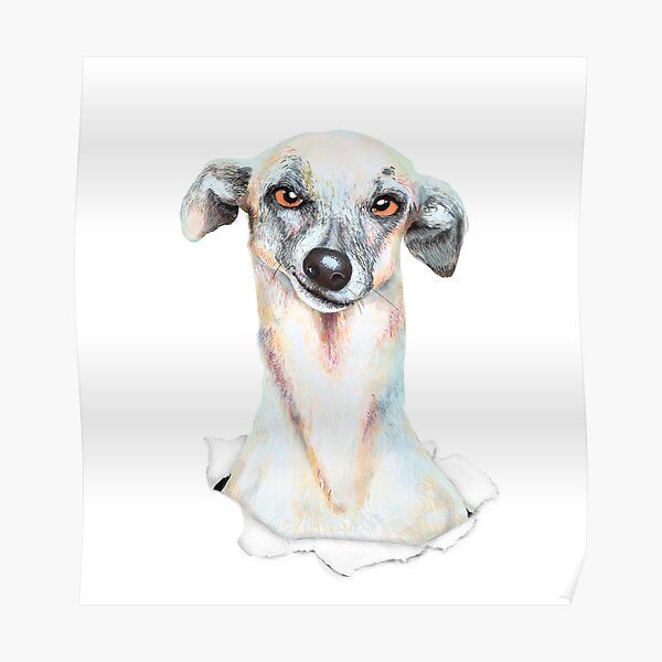 Doggy dog Poster