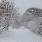 Walmley Winter Wonderland by CreativeEm