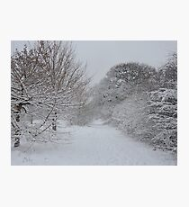 Walmley Winter Wonderland Photographic Print