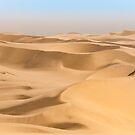 Namib by Brendan Buckley