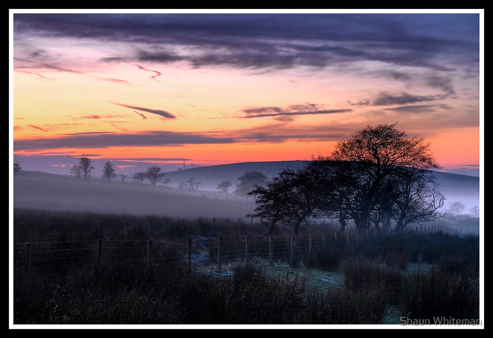 Freezing fog at sunset by Shaun Whiteman