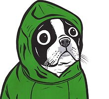 Boston Terrier Green Hoodie by turddemon
