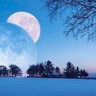 Winter Solstice Fantasy by David Lewins