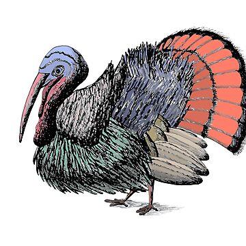 True Turkey by niry