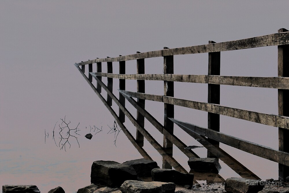 The Fence to Nowhere by spottydog06
