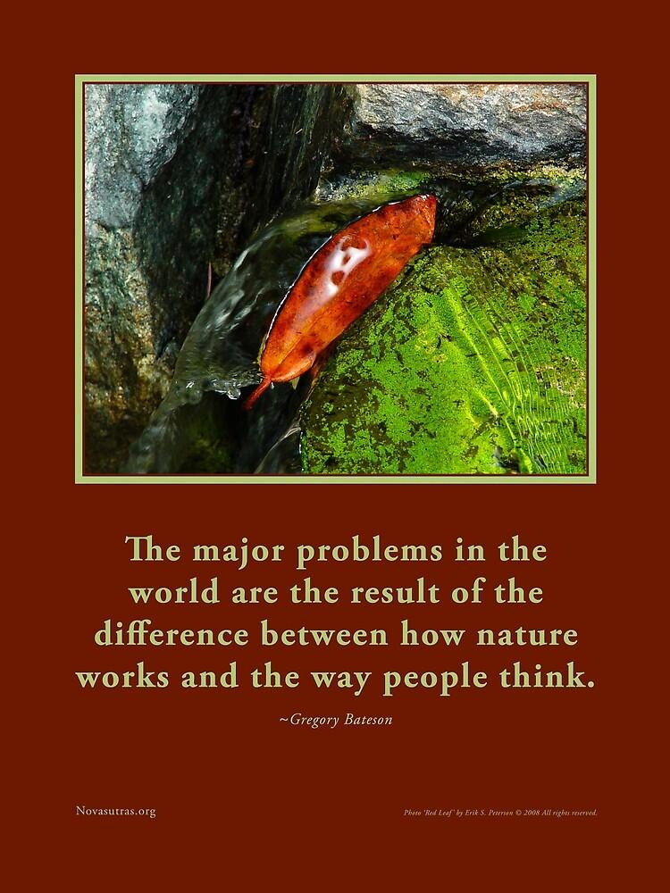 How Nature Works - G. Bateson quote Novasutras by Novasutras