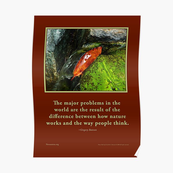 How Nature Works - G. Bateson quote Novasutras Poster