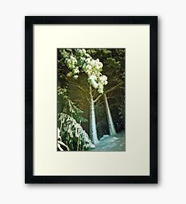 Entrance To The Snowy Woods Framed Print