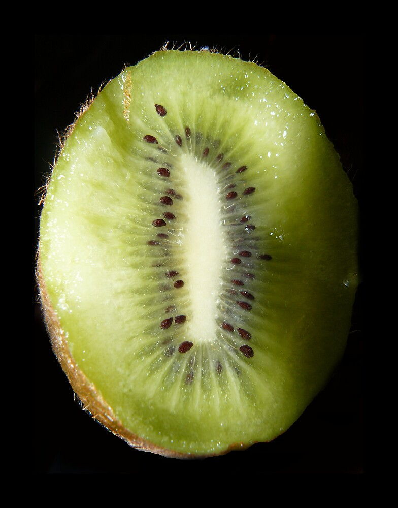 Kiwi 1 by myfotozo