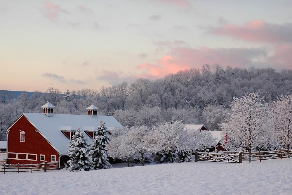 Winter Barn by Michael  Dreese