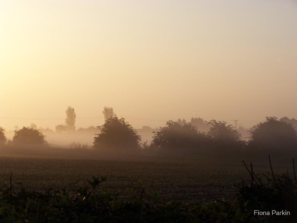Misty morning 1 by Fiona Parkin