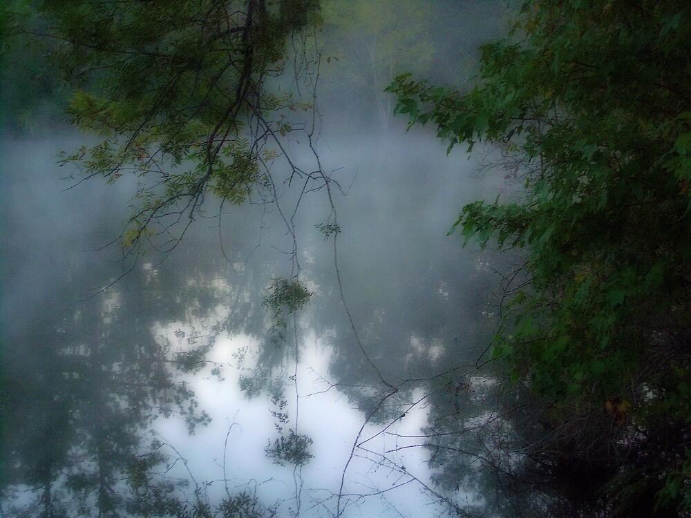 Amazing Lake Fog by DottieDees