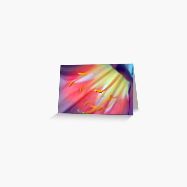 Multicolour Dream Greeting Card