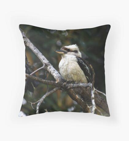Kookaburra sitting in the old Gum Tree Throw Pillow
