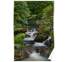 Cascades Near Marysville Poster