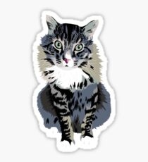 Typical Cat Sticker