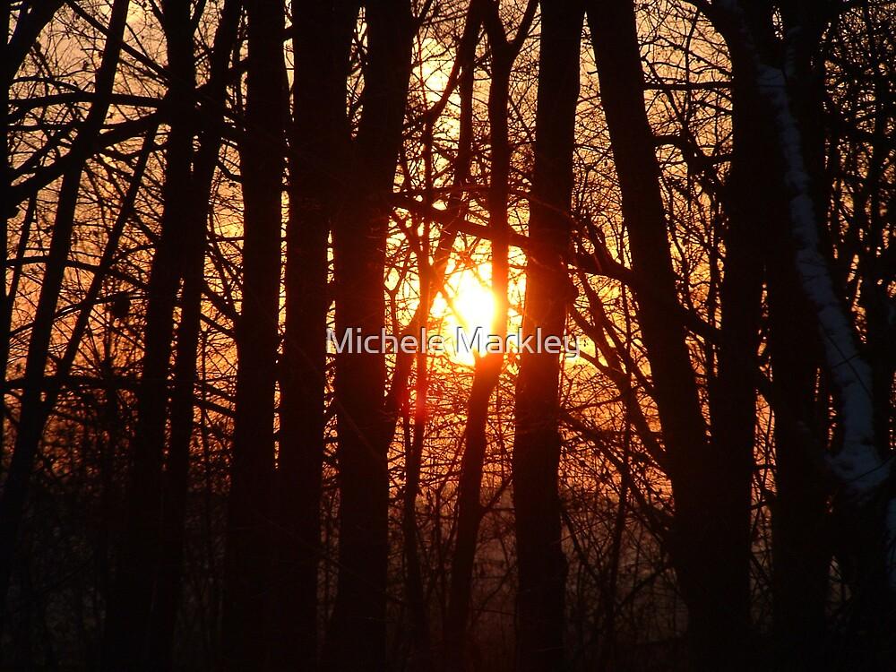 Thanksgiving Sunrise by Michele Markley