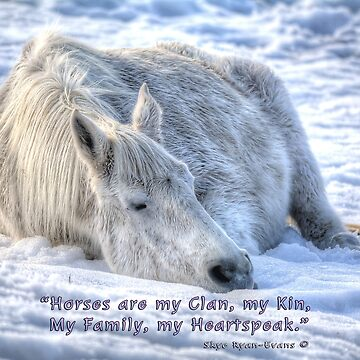Snow Drifting w/ Horses are My Clan Quote by RavenPrints