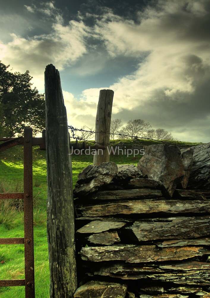 through the fence by Jordan Whipps