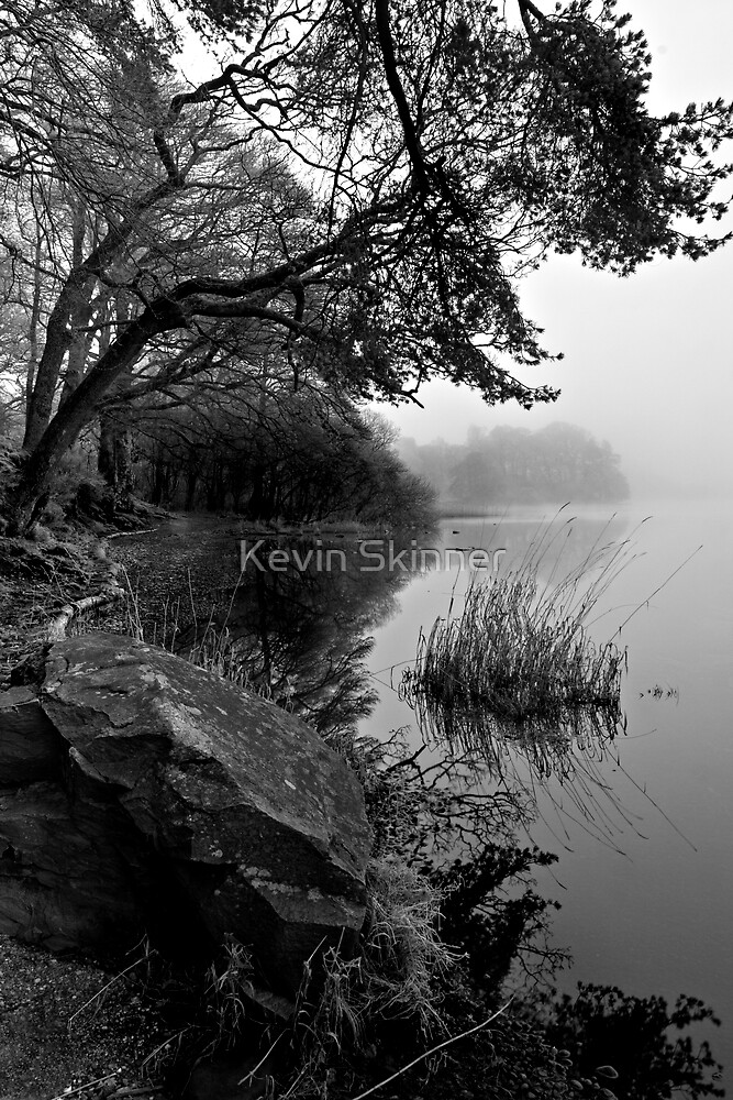 Lake Of Menteith - Misty Shores by Kevin Skinner