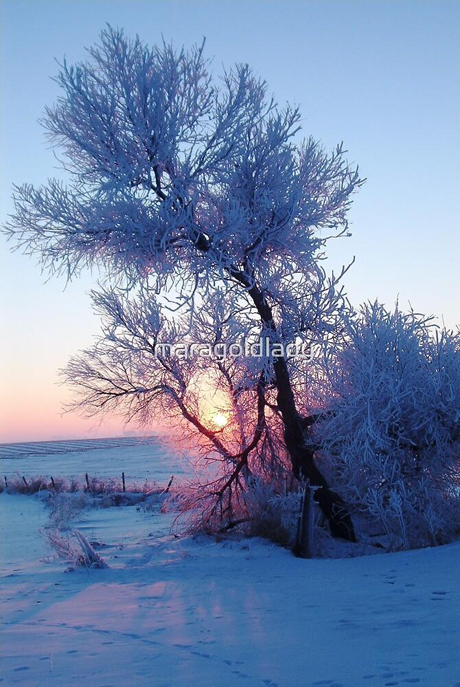 God's Good Morning by maragoldlady