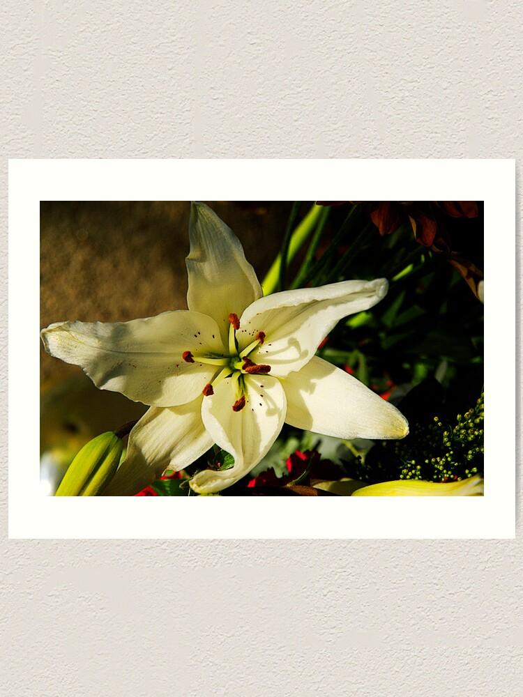 Alternate view of Macro Florals Art Print