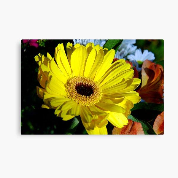 Macro Florals Canvas Print