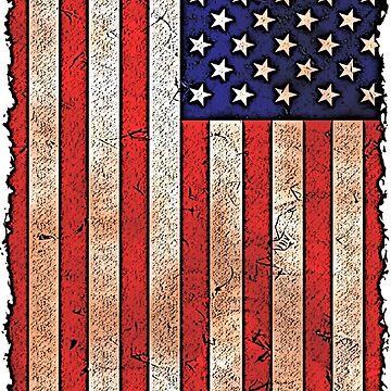 American Flag by Emilyromrell
