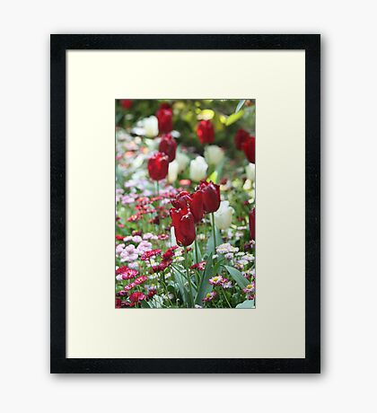 Passion and Purity Framed Print