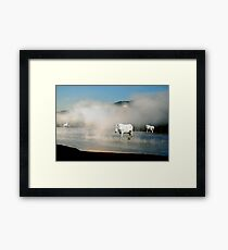 Unicorns in the Mist Framed Print