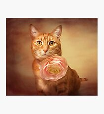 Gracie with rose Photographic Print