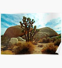 Joshua Tree Rocks Boulders and Sky Poster