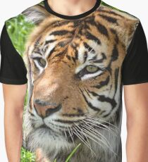Tiger Tiger Graphic T-Shirt