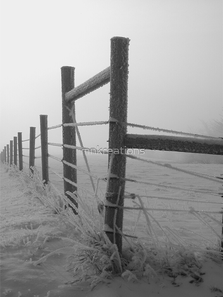 Frosty Fence by mnkreations