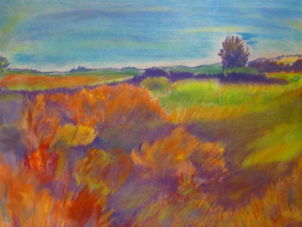 Colorado Prairie by andrewgillette