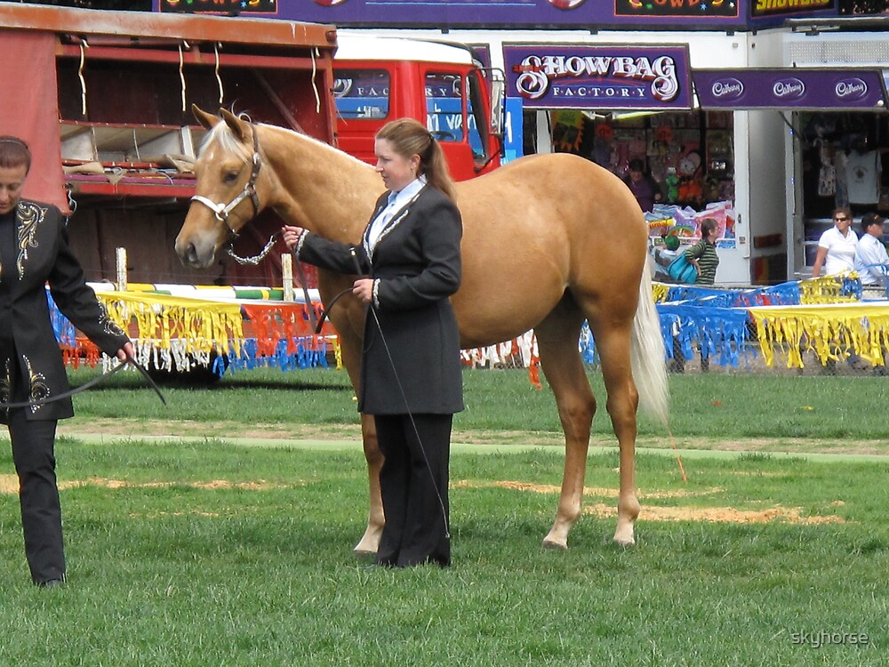 Star's first show outing by skyhorse