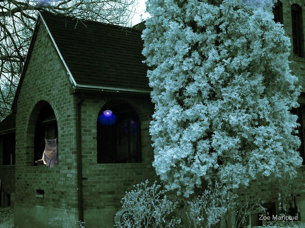 House Of Blue Light by Zoe Marlowe