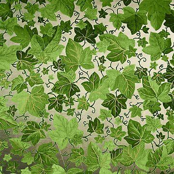 Winter Green by 3vaN