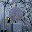 STOP...... the SNOW now...... by Larry Llewellyn
