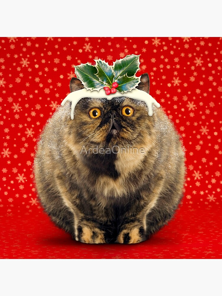 Funny Fat Christmas Pudding Cat by ArdeaOnline