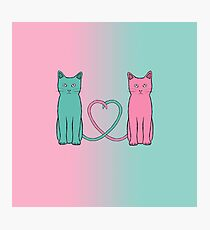 Cat Love Photographic Print