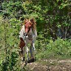 Pony Pathway by Karen Peron