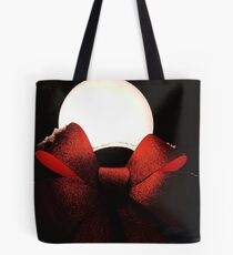 Light Globe on a Snowy Night  Tote Bag