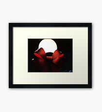 Light Globe on a Snowy Night  Framed Print