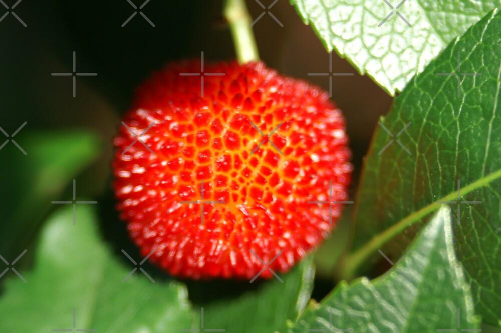 strawberry tree by poupoune