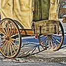 Westward Ho! by Patricia Montgomery
