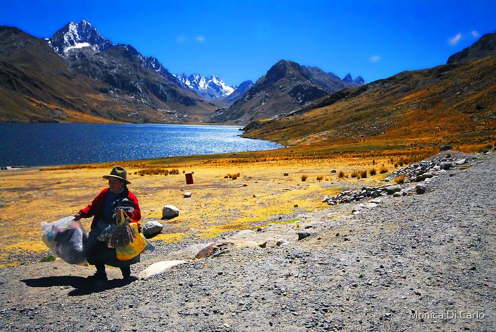 Lake on Andes, Peru by Monica Di Carlo